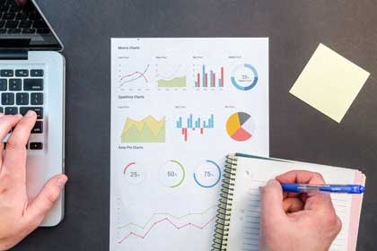 DiSC profile charts and reports for business